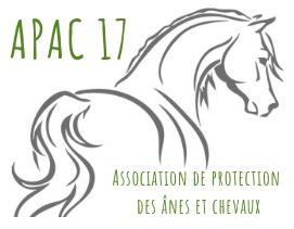 APAC 17